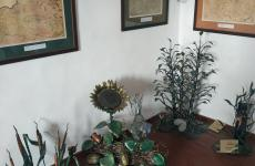 виставка скульптур замок