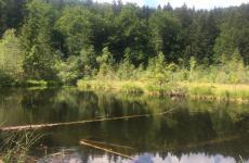 журавлине озеро